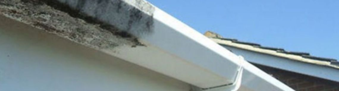 gutters, soffits & fascia cleaning Banbury & Oxford areas